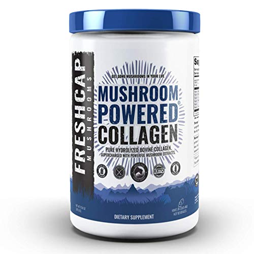 Mushroom Collagen Complex 10