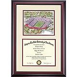Rutgers Scarlet Knights Diploma Frame Ivory Maroon Matting Stadium Watercolor