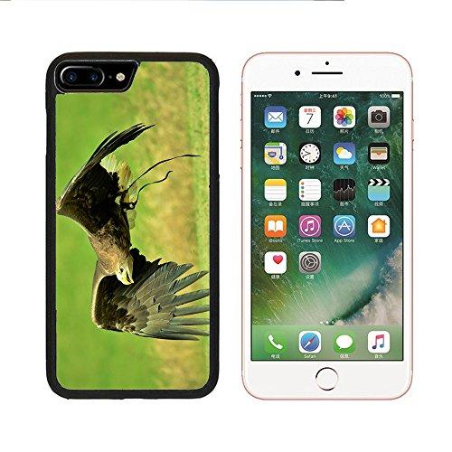 Case for iPhone 7 7S,Harris Hawk Hawk Harris Animal Hunter Falconry (Black) iPhone 7/7S case(4.7 inch)