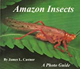 Amazon Insects, James Lee Castner, 0962515019