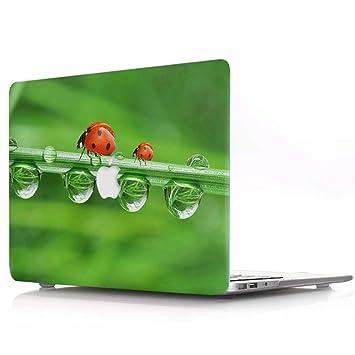 AQYLQ Funda Dura MacBook Pro 13 Pulgadas (Unidad de CD ...