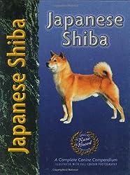 Japanese Shiba