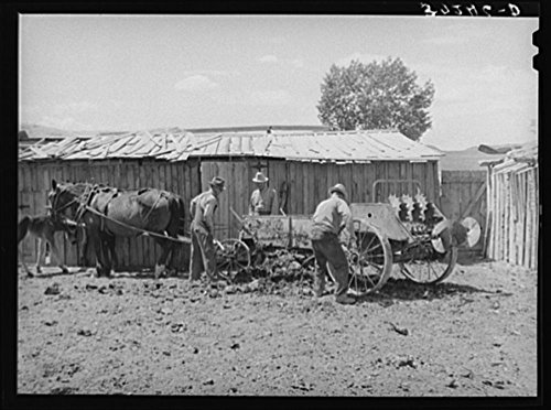 Members of FSA (Farm Security Administration) cooperative manure spreader. Box Elder County, Utah ()