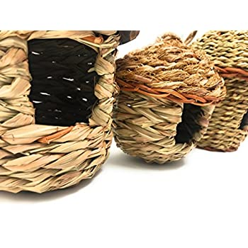 Small Bird Roosting Pocket/Birdhouse, Handwoven Grasses, Set of Three
