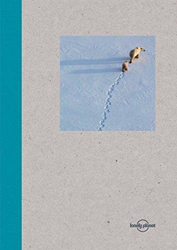 Lonely Planet Small Notebook - Polar Bear pdf epub