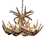 deer horn ceiling fans - Reproduction Antler Whitetail Deer Single Tier Chandelier Light Xlarge