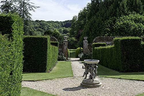 Home Comforts Peel-n-Stick Poster of English Country Garden Formal Yew Hedges Vivid Imagery Poster 24 x 16 Adhesive Sticker Poster Print