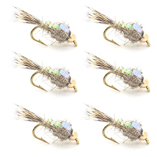 The Fly Fishing Place Bead Head Nymph Fly Fishing Flies - Flashback Gold Ribbed Hare's Ear Trout Fly - Nymph Wet Fly - 6 Flies Hook Size 14 ()