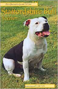 How to Train a Staffordshire Bull Terrier to Protect