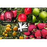 Bulk 3 Apple Tree Seeds Survival Seeds 140 Apple Seeds Upc 647923989779 + 5 Plant Markers