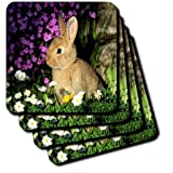 3dRose cst_101080_2 Small Bunny Among Wildflowers Soft Coasters, Set of 8