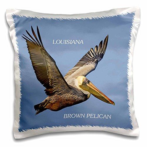 Florene State Birds - State Bird Of Louisiana Brown Pelican - 16x16 inch Pillow Case (pc_50937_1)