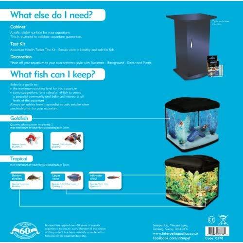 Interpet Acuario con sistema de filtro de cartucho: Amazon.es: Productos para mascotas