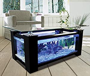 36 gallon rectangle coffee table aquarium