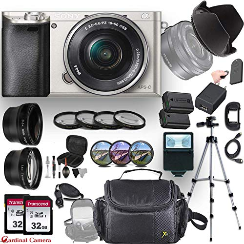 Sony Alpha a6000 (Silver) E-Mount Mirrorless Camera with E 16-50mm f/3.5-5.6 OSS Lens + Professional Accessory-Kit Bundle