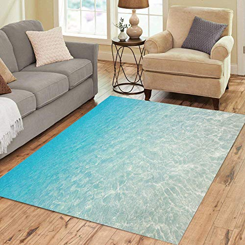 Pinbeam Area Rug Blue Clear Tropical Beach Water Ocean Calm Caribbean Home Decor Floor Rug 5' x 7' Carpet