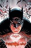 Batman Vol. 7