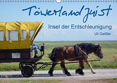 Töwerland Juist (Wandkalender 2016 DIN A3 quer): Insel der Entschleunigung (Monatskalender, 14 Seiten ) (CALVENDO Natur)