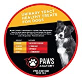 Paws Anatomy Urinary Tract Cranberry Treats for Dogs, Prevent UTIs, Dog Incontinence | Healthy Supplements to Prevent & Treat Dog Urinary Tract Infections | 30 Count - Soft Chews. Up to 60 Servings