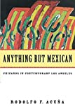 Anything But Mexican: Chicanos in Contemporary Los Angeles (Haymarket Series)