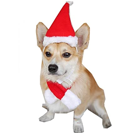 Christmas Hats For Dogs.Amazon Com Mummumi Pet Christmas Hats With Scarf Cat