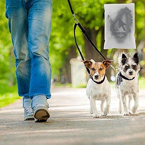 Cadrim correa para perro, correa doble, fabricada,ideal como correa de perro para correr, bicicleta, deporte, running (Doble correa de perro): Amazon.es: ...
