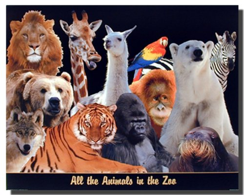 Zoo Animals Tiger, Lion, Giraffe, Wolf, Parrot Kids Room Wall Decor Art Print Poster
