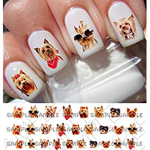 50 Dog Breed Yorkshire Terrier Design 105 Nail Decals 1
