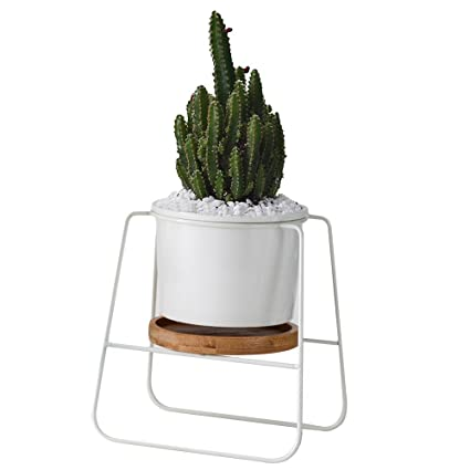 . Planter Pots Indoor 6 30 inch Modern Plants and Planters Garden White  Ceramic Round Bowl Large Planter with Metal Stand Bamboo Tray for Succulent