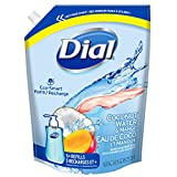 Dial Eco-Smart Hand Soap Refill, Coconut Water Mango , 1.18 Liter (2095810)