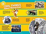 National Geographic Readers: Wolverines (L3)