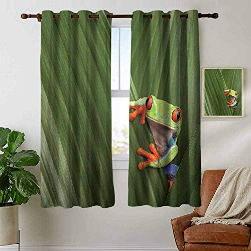 petpany Blackout Curtains for Bedroom Animal,Red Eyed Tree Frog Hiding in Exotic Macro Leaf in Costa Rica Rainforest Tropical Nature,Green,Darkening Grommet Window Curtain 1 Pair 42