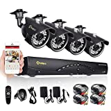 Anlapus 8 Channel HD Video Security System DVR and (4) 900TVL Indoor/Outdoor Weatherproof Cameras with IR Night Vision LEDs- NO HDD