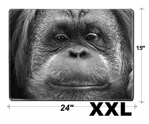 Msd Extra Large Mouse Pad Xxl Extended Non Slip Rubber Large Gaming Desk Mat Orang Utan Monkey Portrait While Looking At Yuo Image 33721268 Customized Tablemats Sta