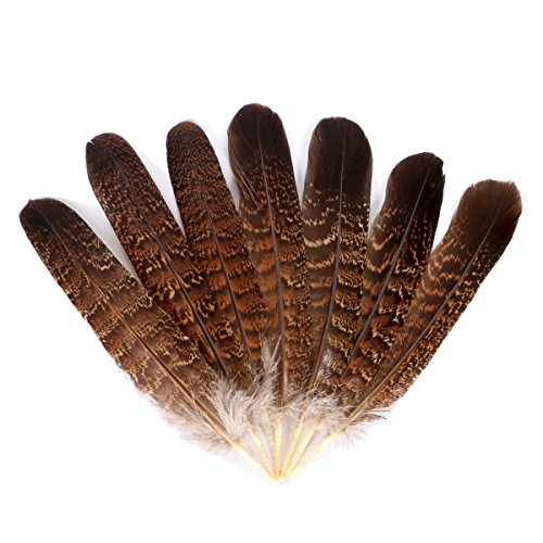 Wionya 10pcs Natural Feather Craft 6-8inch(15-20cm) Plume for Wedding Centerpieces Home Decoration