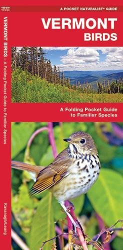 Vermont Birds: A Folding Pocket Guide to Familiar Species (A Pocket Naturalist - In Ct Waterford Stores