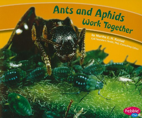 ants-and-aphids-work-together-animals-working-together