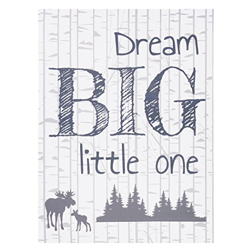Trend Lab Dream Big Little One Canvas