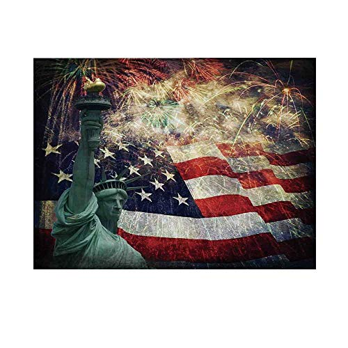 - American Flag Decor Photography Background,Composite Photo of States Idols with Fireworks on Background 4th of July Backdrop for Studio,10x8ft