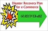 Go. Recover-EBIZ : Disaster Recovery Planning for e-Business Web Site Computer Operations, Jan Persson, 1931332045