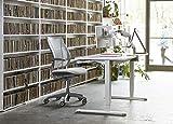 Humanscale Liberty Task Chair   Monofilament Black