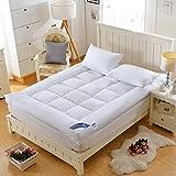DHWJ Stereo mattress Tatami folding mattresses Non-slip bed mat-B 120x200cm(47x79inch)