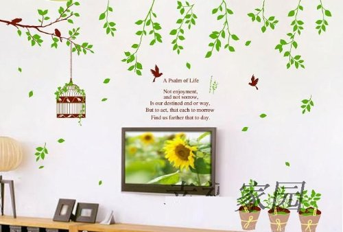 Buy Syga Wall Sticker PVC Vinyl  Cm X  Cm X  Cm Syga - Wall decals india