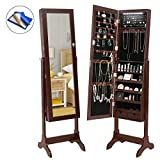 HollyHOME Mirrored Jewelry Cabinet Lockable Standing Jewelry Armoire Holder Organizer with LED Lights, 4 Angle Adjustable, Brown