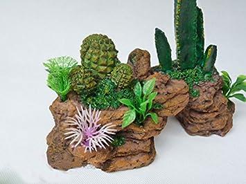 Cactus Acuario Paisaje Ornamento de acuario Arts & Crafts: Amazon.es: Productos para mascotas
