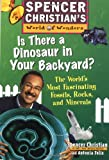 Is There a Dinosaur in Your Backyard?: The World's Most Fascinating Fossils, Rocks, and Minerals