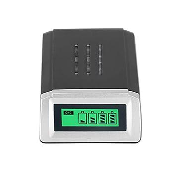 Amazon.com: Cargador de batería inteligente EU Plus ...