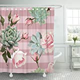 Dusty Pink Shower Curtain TOMPOP Shower Curtain Green Succulents and Roses of Floral Dusty Pink Stripes Waterproof Polyester Fabric 72 x 72 Inches Set with Hooks