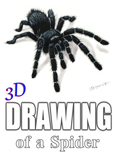 3D Drawing of a Spider by