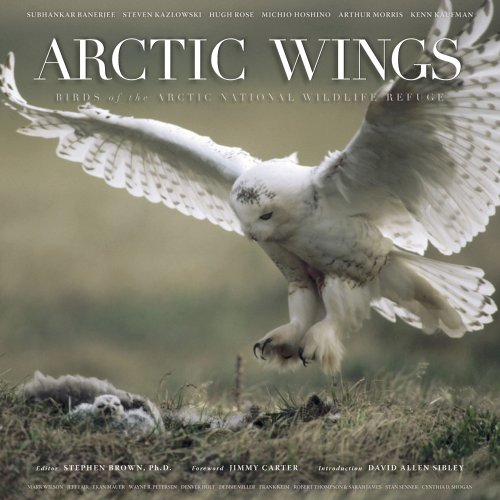 Arctic Wings: Birds of the Arctic National Wildlife Refuge by Brand: Mountaineers Books